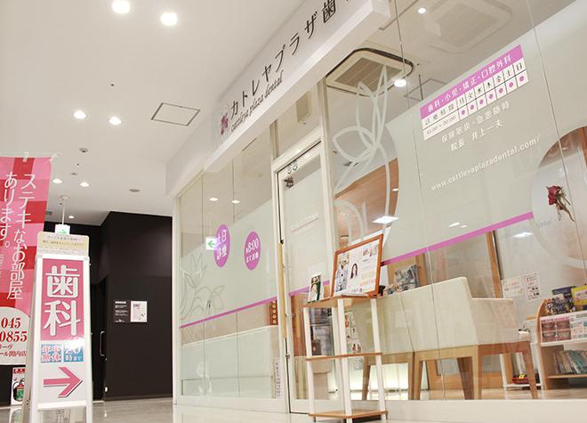 関内駅 北口徒歩 5分 カトレヤプラザ歯科の外観写真7