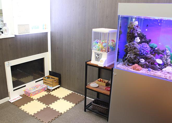 本八幡駅(JR) 南口徒歩1分 クリスタル ミツル歯科写真5