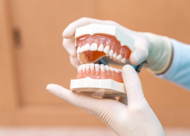 【越谷市:新越谷駅 徒歩1分 / 南越谷駅 徒歩1分】 グレース歯科クリニックのスタッフ写真5