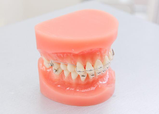 さくら歯科クリニック横浜中田のおすすめポイント