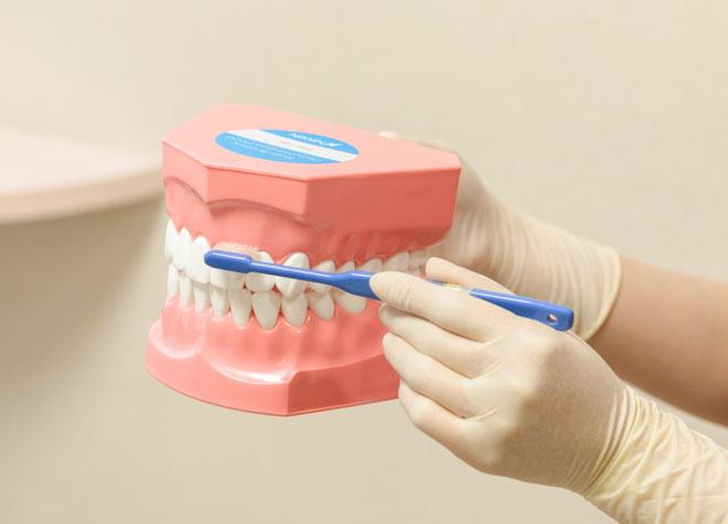 いこい歯科医院のおすすめポイント