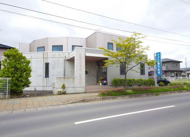 東西循環線 加賀野停留所徒歩 5分 かがの歯科医院写真1
