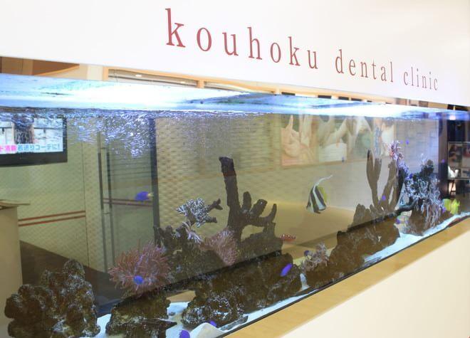 アス港北歯科クリニックの画像