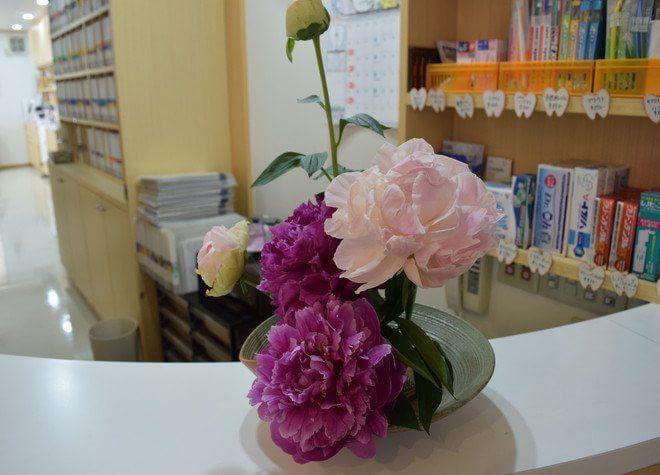 東加古川駅 出口徒歩 15分 そう歯科クリニックの院内写真3