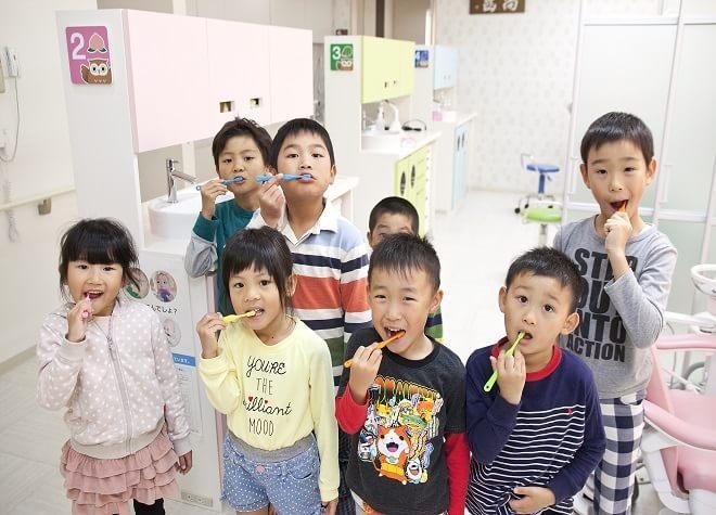 岡田駅(香川県) 出口車8分 平田歯科医院写真7