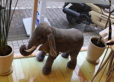 大井町駅 車11分 宮下歯科室の院内写真4