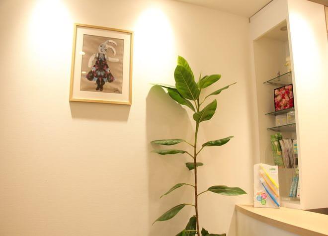 朝霞台駅 北口徒歩 6分 たんの歯科クリニックの院内写真3