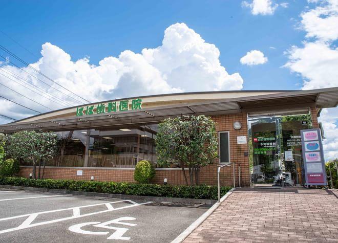 石和温泉駅 出入口1徒歩16分 ばば歯科医院写真5