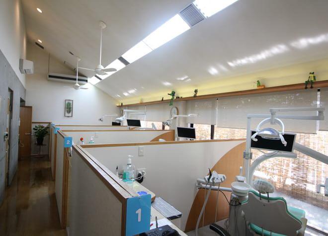 江南駅(愛知県) 徒歩15分 本郷歯科クリニックの院内写真4