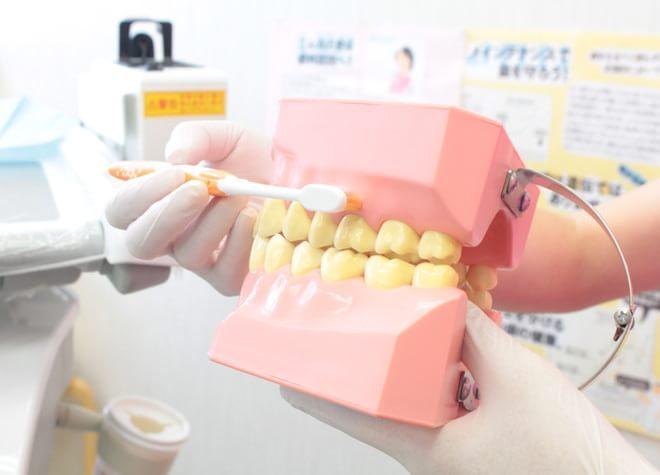 しおた歯科医院の画像
