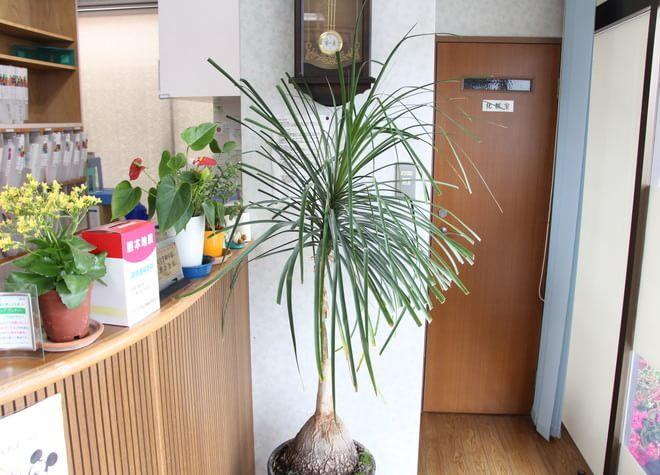 北長瀬駅 出口徒歩 15分 多田歯科医院の院内写真4