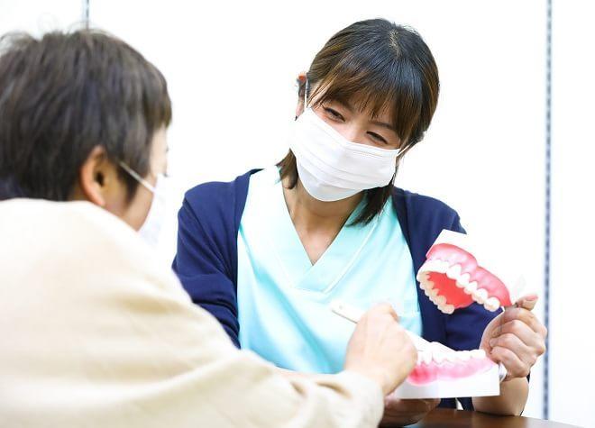 元町駅(北海道) 出口徒歩 5分 医療法人社団きぢ歯科クリニック写真7