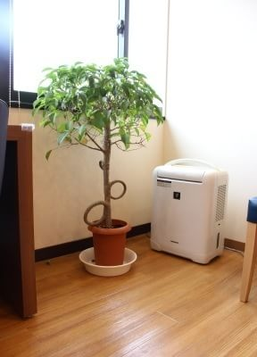 荒田八幡駅 徒歩8分 たけはら歯科医院の院内写真6