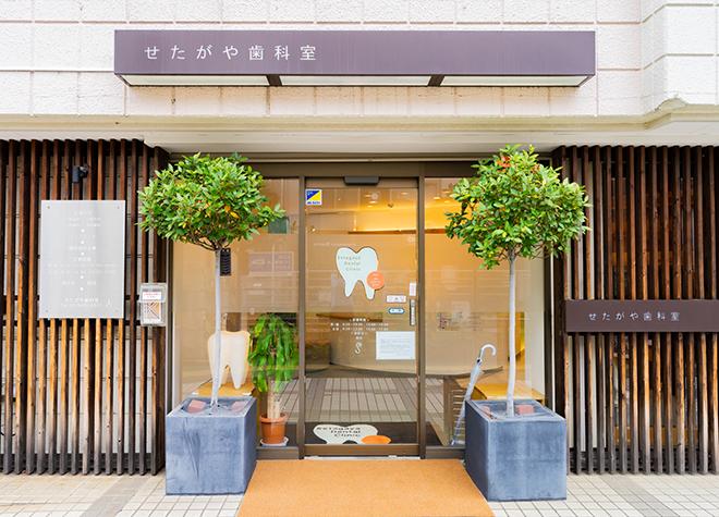 結局どう選べばいい?松陰神社前駅の歯医者3院おすすめポイント