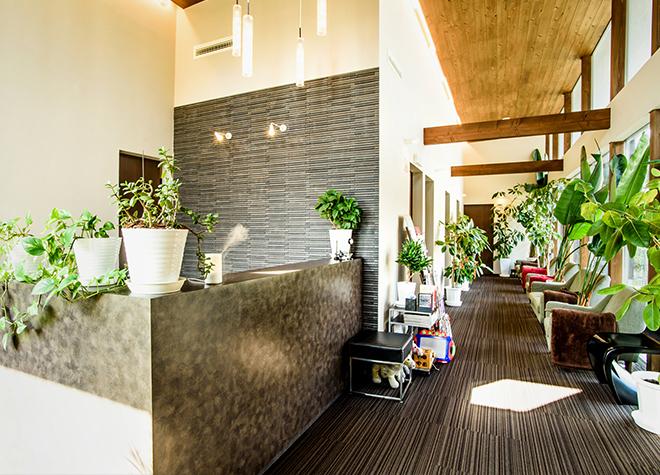 ≪歯医者予約≫萩市にある2院!おすすめポイントを紹介