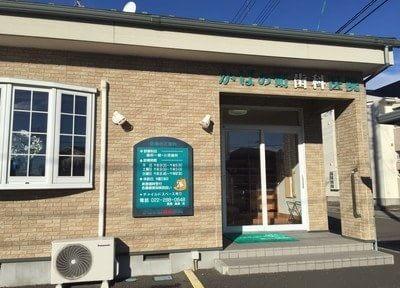 かばの町歯科医院の画像