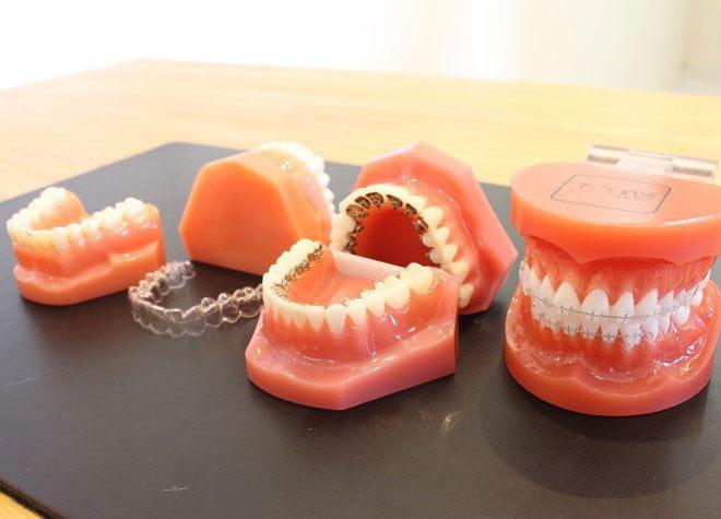 西尾城下町矯正歯科ブルーノの画像