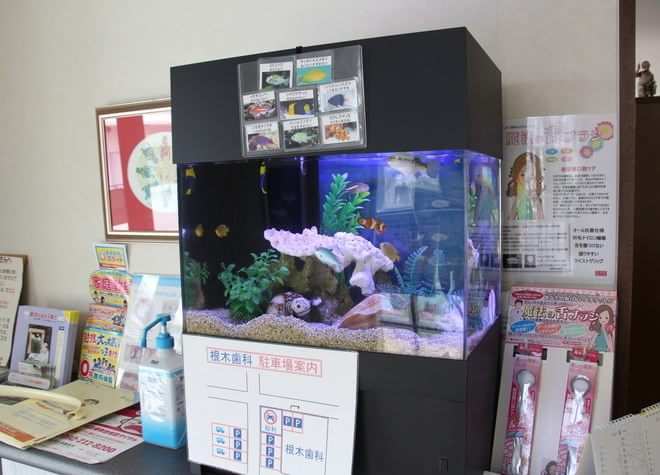 春日駅(福岡県) 西口徒歩4分 根木歯科医院の院内写真3