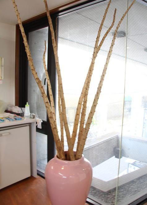 三軒茶屋駅 徒歩1分 池村歯科医院の院内写真4