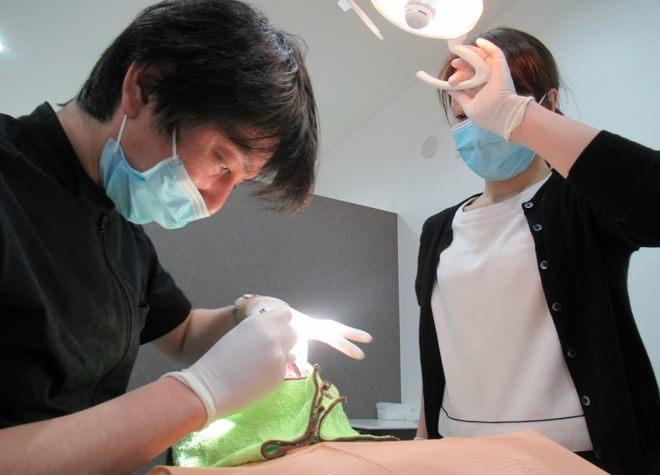 めばえ歯科クリニックの写真3