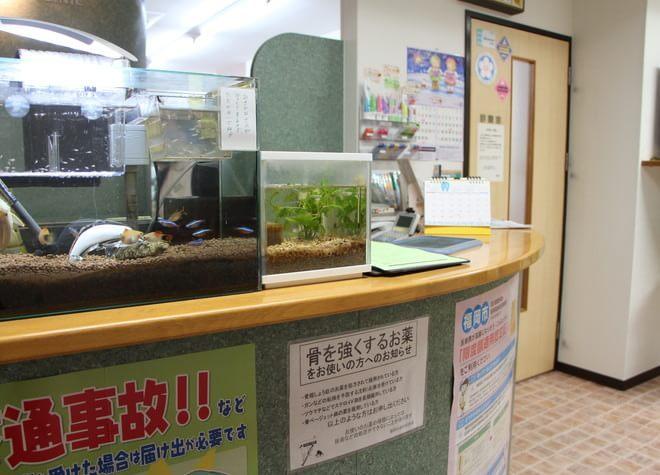 土井駅 出口徒歩 5分 いわもと歯科医院の院内写真7
