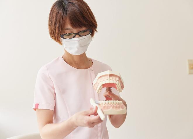 堺市駅 出口徒歩 8分 もり歯科医院のスタッフ写真2
