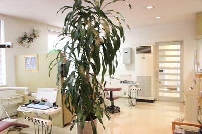 江南駅(愛知県) 出口車10分 富田歯科医院の院内写真3