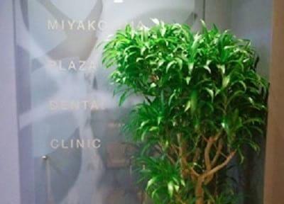 都島駅 4番出口徒歩 7分 都島プラザ歯科のその他写真2