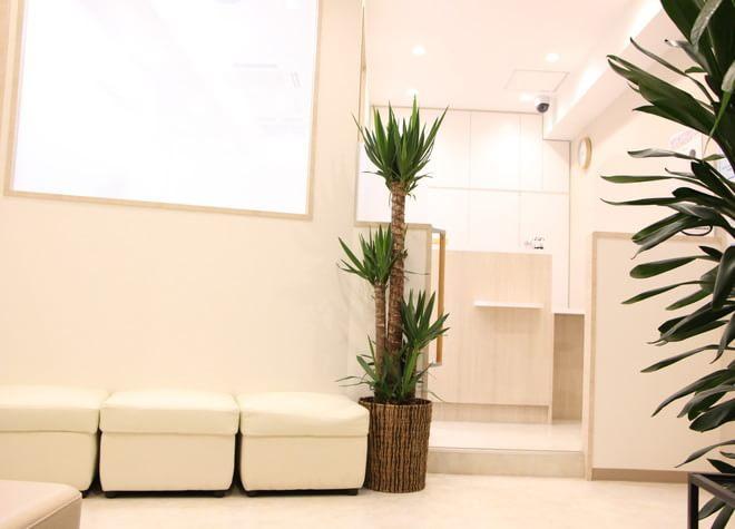 天満橋駅 出口徒歩 4分 おおはし歯科医院(大阪市中央区)の院内写真3