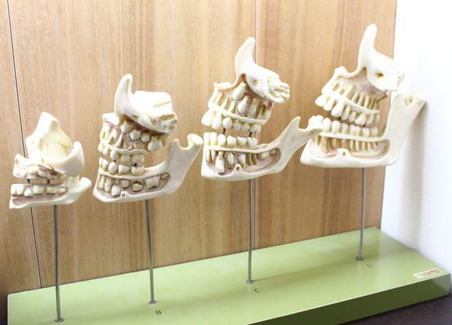 藤井寺駅 出口徒歩14分 みはら歯科の院内写真3