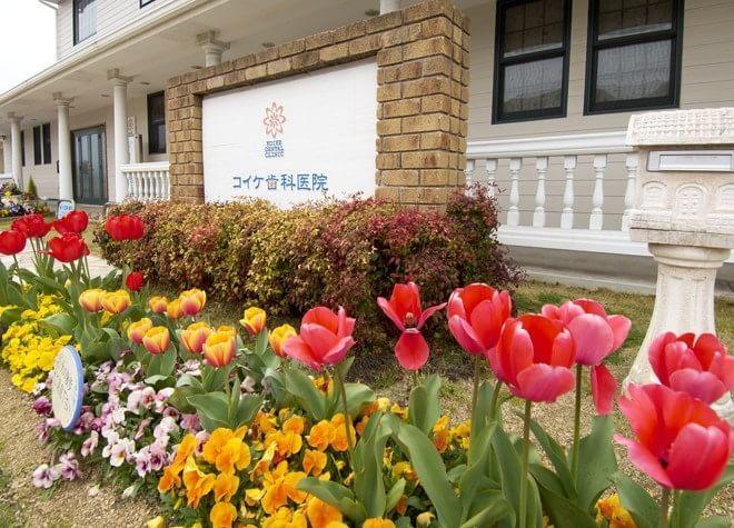 コイケ歯科医院 朝霧インプラントセンター