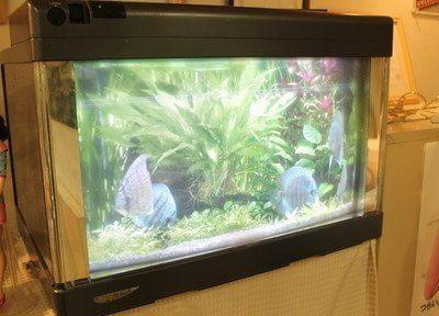 大須観音駅 2出入口徒歩4分 名古屋歯科口腔外科の院内写真5
