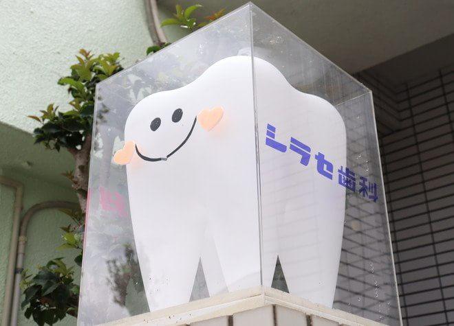 医療法人優美会  シラセ歯科