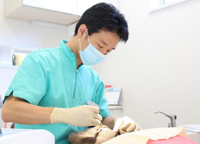 とも歯科こども歯科の画像