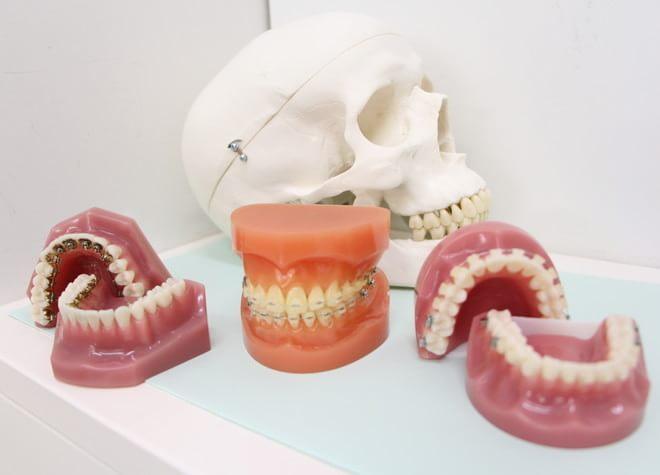 鷺沼駅 出口徒歩 2分 りょうかわ矯正歯科クリニックの院内写真4