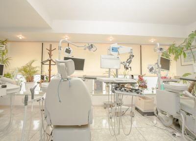 吉塚駅 出口 徒歩10分 さかもと歯科医院(筥崎宮の横)の院内写真1