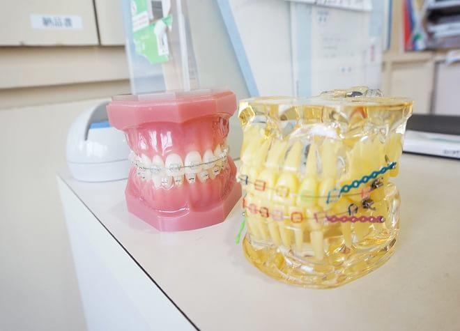 36矯正歯科の画像
