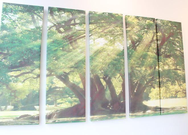 向ヶ丘遊園駅 北口徒歩 2分 オリーブ歯科の院内写真7