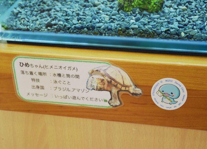 姫路駅 北口徒歩5分 溝井歯科医院の院内写真6