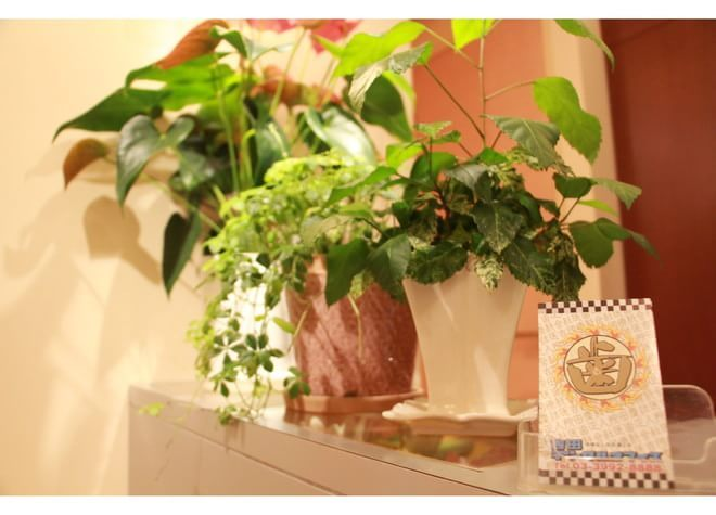 吉田デンタルオフィスの写真5