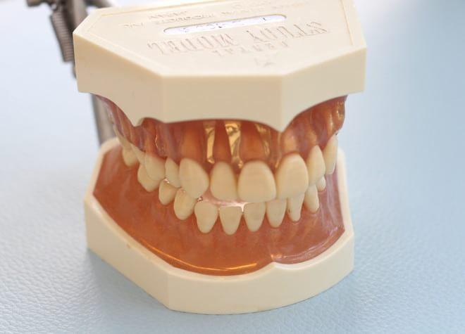 元住吉駅 西口徒歩 3分 ブレーメンホワイト歯科の院内写真4