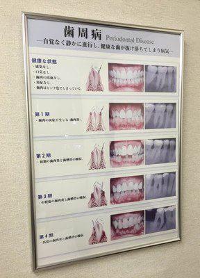 難波駅(南海)東出入口1 徒歩3分 おぐり歯科医院の院内写真6