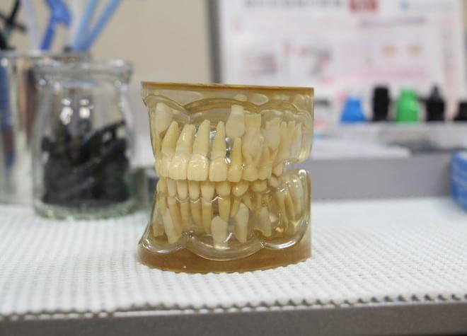 市布駅 出口車 7分 たら歯科医院の院内写真7