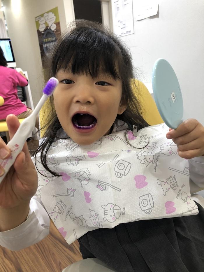 歯磨き指導なう